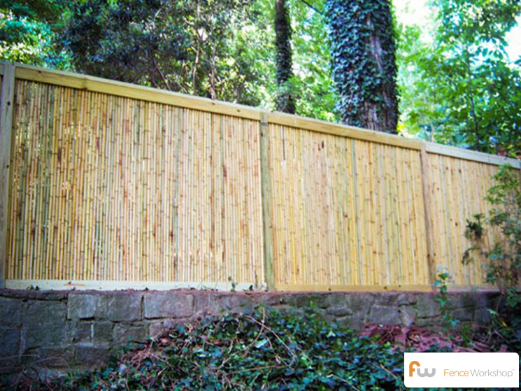 the babcock bamboo privacy fence