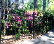 Dawson Fence Panel