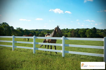 Horse fencing fence workshop™