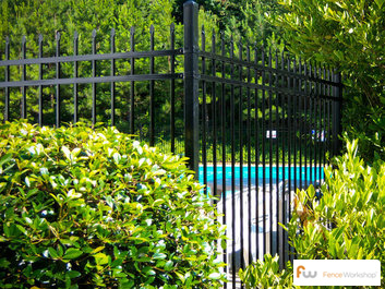 Beautiful pool fences
