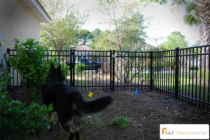 Professional dog fence installers