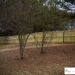 bloomfield-wood-privacy-fence13