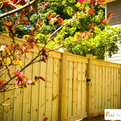 washington-wood-privacy-fence9main